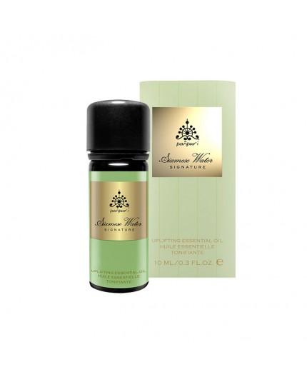 ätherisches Öl Jasmin, Minze, Ylang Ylang